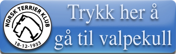 /Userfiles/Sites/images/Knapp%20for%20%C3%A5%20g%C3%A5%20til%20valpekull.jpg
