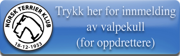 /Userfiles/Sites/images/Knapp%20for%20innmelding%20av%20valpekull%281%29.jpg