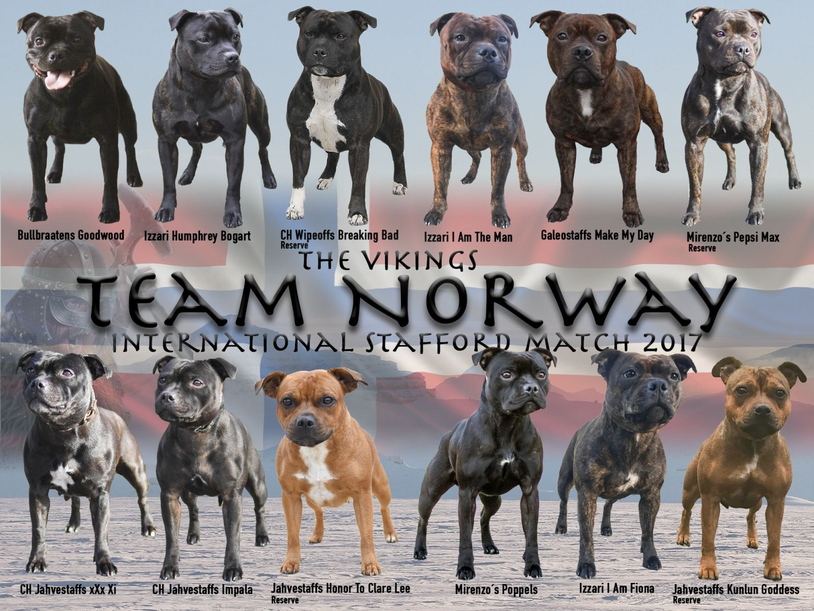 Team Norway 2017