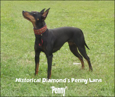 N UCH Historical Diamond's Penny Lane